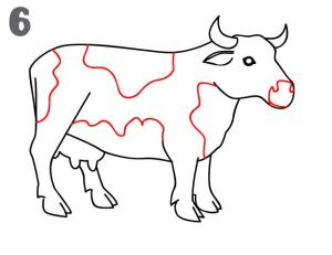 Cow drawing